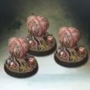 3 spores