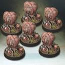 6 spores